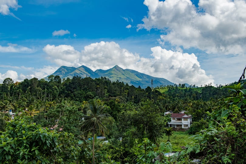 Places To Visit In Wayanad In 3 Days: Wayanad Tourist Places List