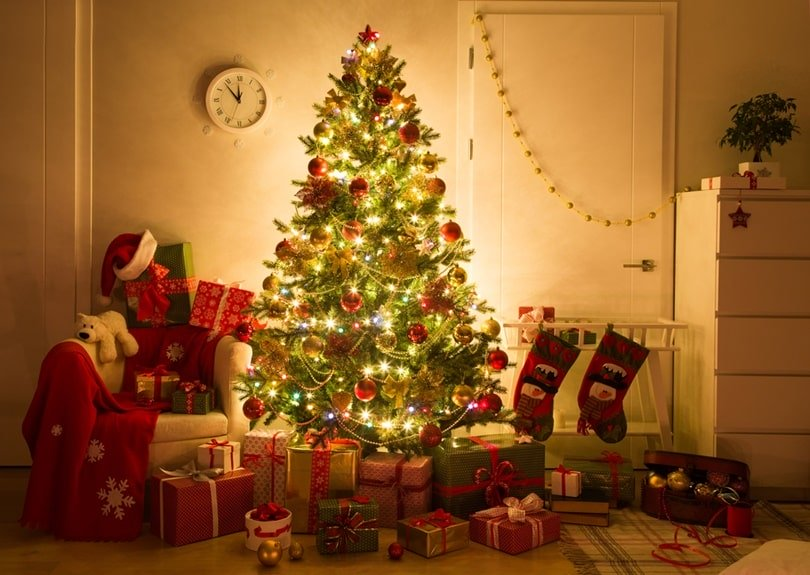 The Amazing Things You Didn't Know About Christmas Celebration